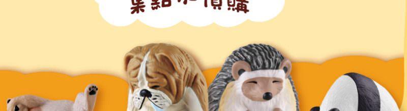 全家休眠動物園集點加價購‧吸盤/磁鐵/存錢筒滿額免費兌換