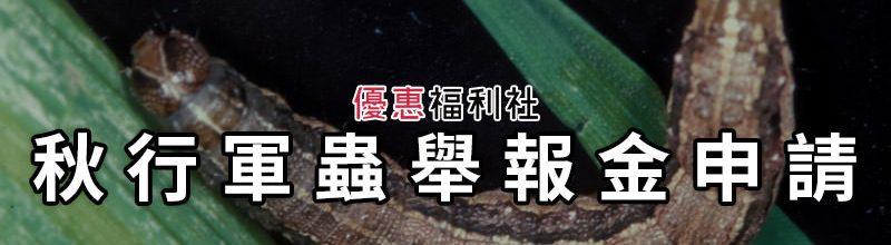秋行軍蟲檢舉獎金‧APP、Line@、臉書、防疫專線即時回報